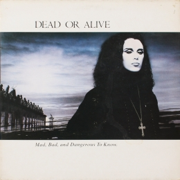 Dead Or Alive ‎– Mad, Bad And... (LP)