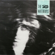 The Waterboys - The Waterboys (LP)