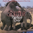 Skin ‎– Perfect Day (SP)
