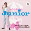 Junior ‎– Mama Used To Say (American Remix)