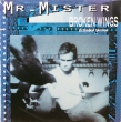 Mr. Mister ‎– Broken Wings (EP)