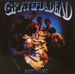 Grateful Dead ‎– Built To Last (CD)
