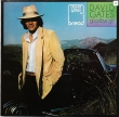 David Gates ‎– Goodbye Girl (LP)