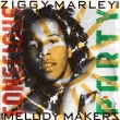 Ziggy Marley ‎– Conscious Party (LP)
