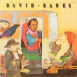David Banks – I Used To Be A Bus Driver (LP)