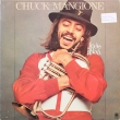 Chuck Mangione ‎– Feels So Good (LP)