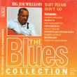 Big Joe Williams – Baby Please Don't Go (CD)